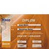Spanndecken Diplom Descor Pong